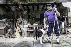 Aurelio se está restableciendo (Jabi Artaraz) Tags: aurelio pastor perro dog chien artzaina caserío trastos