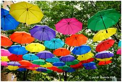 Colours Of Our Life 人生傘聚 - Yaletown XT5863e (Harris Hui (in search of light)) Tags: harrishui fujixt1 digitalmirrorlesscamera fuji fujifilm vancouver richmond bc canada vancouverdslrshooter mirrorless fujixambassador xt1 fujixcamera fujixseries fujix fujixf1024mm fujizoomlens yaletown umbrellas artinstallation colours colorful street urban downtown downtownvancouver friends family stayingtogether 人生傘聚 analogy