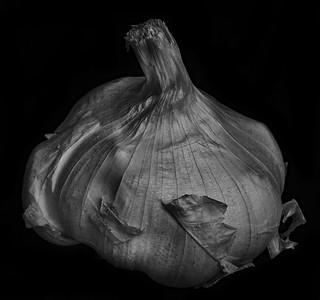 Garlic In Black And White