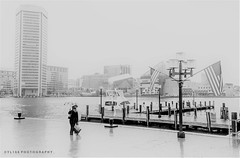 A Rainy Day in Baltimore (YL168) Tags: sony a6500 攝影發燒友 flickrunitedaward