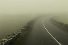 into the mist (desertdragon) Tags: anne ireland