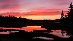 Sunset on Pretty Marsh (T L Sepkovic) Tags: sunset reflection colorful sky marsh silhouette trees maine woods mtdesertisland quietside canon landscape water