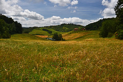 Tuscany_Via Francigena (Mizar Settantuno) Tags: ngc clouds nuvole europe flower flowers fun green holiday italia italy lake landscape light nature new nikkor nikon photo photography photos picture pictures sky summer travel tree trees trip vacation