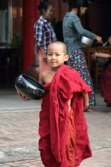Myanmar Child Monk