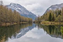 Palpuogna See #2 (FontanaFoto) Tags: albula pas graubünden ansicht palpuogna see bergun switserland albulapas palpuognasee bergünbravuogn zwitserland ch