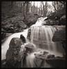 Waterfall Along the Cheat (DRCPhoto) Tags: zeroimage pinhole lenslessphotography 6x6 squareformat ilfordxp2super 120film westvirginia