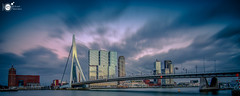 [E X P L O R E] Rotterdam pano II (Robert Stienstra Photography) Tags: rotterdam rotterdamcityscape rotterdamskyline cityscape cityscapes bigcity bluehour bluehourphotography nightscapes nightshots nightlife nightscape longexposure longexposurephotography riverscape bridge bridges kopvanzuid nikond7100 bigstopper lee tokina1224mm pano panorama panoramic panoramas