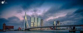 [E X P L O R E] Rotterdam pano II