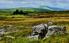 Penyghent (tina negus) Tags: langcliffe scar penyghent limestone ribblesdale yorkshire dales