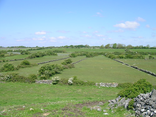 turlough Ballinacourty empty May 05. Photo by Micheline Sheehy Skefffington.