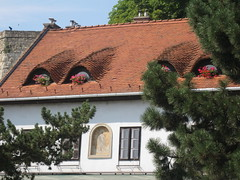 a roof in town Eger (VERUSHKA4) Tags: flora fleur flower beautiful red roof canon eger europe hungary town ville vue view outdoor summer decor july summertime icon architecture fenetre window greens verdure nature sunny day pine branch fragment wall chimney saint christ geranium composition astoundingimage