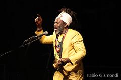 BABA SISSOKO (fabiogis50) Tags: festivalaudésert firenze babasissoko mali music musician musica artist