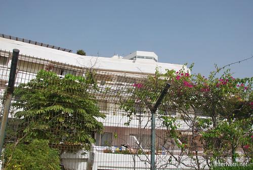 Готель Хардін Тропікаль, Тенеріфе, Канари  InterNetri  372