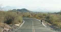 Summit Road - 2665 (AZDew) Tags: arizona biking desert exercise municipalpark phoenix phoenixarizona phoenixparks southmountain southmountainpark southmountainparkandpreserve summitroad workout