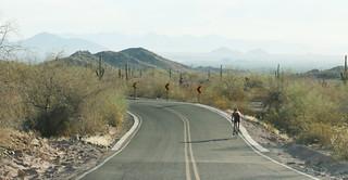 Summit Road - 2665