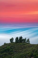 Sinewave (dsafanda) Tags: mttam mttamalpais fog marin