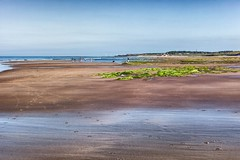 The Beach (Missy Jussy) Tags: beach beachscape sea seaside druridgebay northumberland northeastcoast ocean coast coastline shoreline sand rocks seaweed light water sky land landscape footprints campingtrip holiday canon 50mm ef50mmf18ll ef50mm canon50mm fantastic50mm canoneos5dmarkii canon5d canon5dmarkll england britishsummertime britishweather outdoor outside
