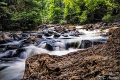 180625-07 Rivière Saint-Charles (clamato39) Tags: rivièrestcharles river rivière eau water poselongue longexposure provincedequébec québec canada nature forest forêt