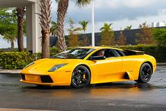 Lamborghini Murcielago (amm6587) Tags: lambo lamborghini v12 carbon carbonfiber fiber car auto exotic supercar wings murci murcie murcielago yellow nikon florida miami southflorida broward supercarsaturyda supercarsaturdaysflorida