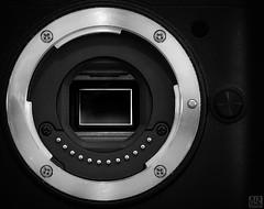 Look inside V1 (MAICN) Tags: makro technisch bw photographygear blackwhite monochrome macro macromonday schwarzweis nahaufnahme mono macromondays einfarbig sw technical mm