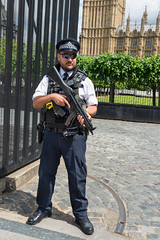 AFS-2017-03172 (Alex Segre) Tags: capital city cities armed police policeofficers policeofficer policemen policeman gun guns firearm firearms weapon weapons outside outdoors outdoor security guarding housesofparliament bigben westminster central london uk england britain english british europe european in a alexsegre