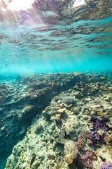 Underwater Heron Island-8 (Quick Shot Photos) Tags: australia canon canoncollective greatbarrierreef heronisland queensland underwater bogie au