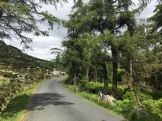 Éire, Cúige Laighean, Contae Chill Mhantáin, Old Military Road