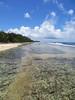 IMG_6210 (stevefenech) Tags: south pacific islands travel adventure stephen steve fenech fennock marshall beach water colourful