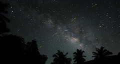 My & Milky Way (Madhav Jois) Tags: fire fly milyway galaxy home