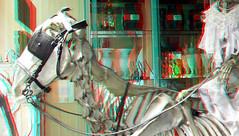 Skeleton Horse in Shop Arnhem 3D (wim hoppenbrouwers) Tags: skeleton horse shop arnhem 3d anaglyph stereo redcyan paard shopwindow