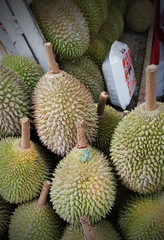 Durian - smelliest fruit in the world but the taste of its meat is out of this world (j0035001-2) Tags: fruit plant tree smelly durian yellow singapore tropical thorn food nature