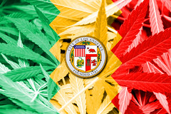ICYMI: Los Angeles County Releases Proposed Options for Cannabis Regulation (jodieshazel) Tags: losangeles california city usa unitedstates us america north american background cannabis cannabisleaf coffeeshop contraband dealer dope drug drugpolicy emblem ganja grass green hash hashish hemp herb herbal illegal joint law leaf legal legalization marihuana marijuana narcotic plant policy smoke substance symbol thc weed fight smuggling concept government education