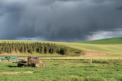Flatbed Ford (garshna) Tags: flatbed ford truck rusty old clouds storm pasture easternwashington