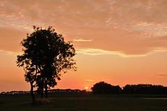 Zonsopkomst vanmorgen (Omroep Zeeland) Tags: ochtendgloren weer weerfoto zeeland natuur vlissingen walcheren opkomendezon oostsouburg rtlweerfoto meteogroup buienradar