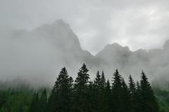 Giants and guardians (Csaba K) Tags: mist forest mountain austria lammertal tennengebirge alps