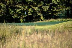 Harburn 0618 12th (Jistfoties) Tags: golf golflandscapes harburngolfcourse harburngolfclub landscapes westlothian