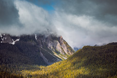 Mount Rainier National Park (ChristinaForever) Tags: rainier park mountrainier mountrainiernationalpark mountain volcano clouds fog hills cascades hiking washington pnw