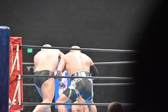 DSC_8336 (earthdog) Tags: 2018 needstags needstitle googlepixel pixel androidapp moblog cameraphone prowrestling wrestling newjapan newjapanprowrestling cowpalace g1usa nikon d5600 nikond5600 18300mmf3563 arena dalycity
