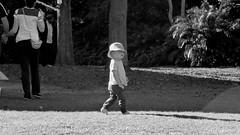 // Trippn at Mt Coot-Tha (CornerView) Tags: kid cool outside park brisbane austalia sun travel