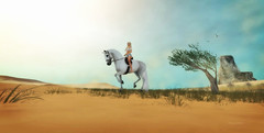 Desert ride (2) (Kayleigh Lavender*) Tags: devin desert sand horse riding devinseye sl secondlife