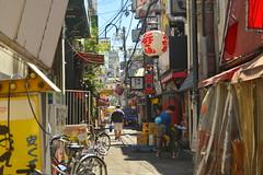 DSC_0056 (sxcxxhx) Tags: japan osaka kyoto hydrangea flower trip voyage 日本 大阪 京都 旅行