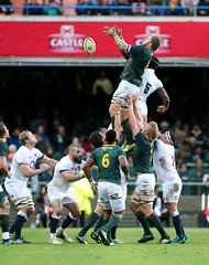 3 Player (O2 Sports) Tags: rugby union international england boks bokka bokke springboks capetown southafrica rsa
