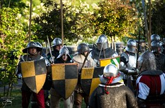 Giornate medievali al Castello di Gorizia - 467 (giannizigante) Tags: gorizia castello giornatemedievali medioevo rievocazionistoriche