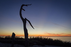 Monterey Peninsula, California, USA (United Nations Photo) Tags: miis monterey sg sanfrancisco un