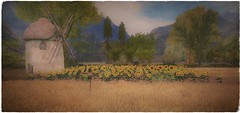 The Old Mill @ Eri Ador (ᗷOOᑎᕮ ᗷᒪᗩᑎᑕO) Tags: windmill mill old scarecrow sunflowers nature scenic painting secondlife sl flickr eriador