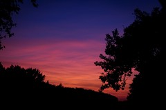 Sunsets over Texas (katyearley) Tags: 55mm canonrebelt6 texas black trees silhouette clouds blue pink orange sunset