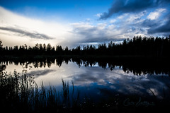 An evening in Finland (CecilieSonstebyPhotography) Tags: landscape finland water magical canon evening clouds trees markiii silhouette tree ef1635mmf28liiusm forest canon5dmarkiii sky straws woods reflection lake