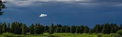 Lonely cloudlet. (EQG64LOQDXKYEIAPTYHNDN5KHB) Tags: pilveke vihmapilved eesti tartu ee cloud