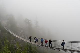 Foggy at the Sky Pilot Suspension Bridge (_K1_2228)