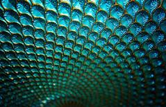 MM Line Symmetry (Jenny Onsager) Tags: macromondays linesymmetry symmetry blues aqua colors bowl macro